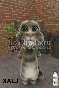 ��������� ��� ��� (talking tom cat)